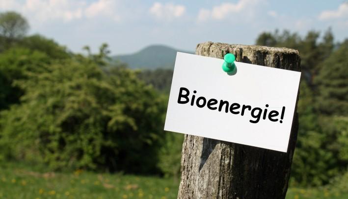 De la Biomasse en Bioénergie