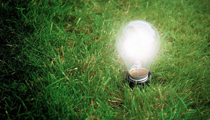 L'utilisation de l'énergie biomasse